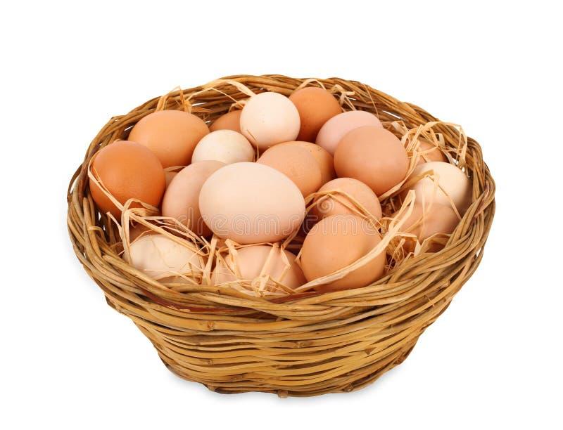 篮子用鸡蛋 库存图片
