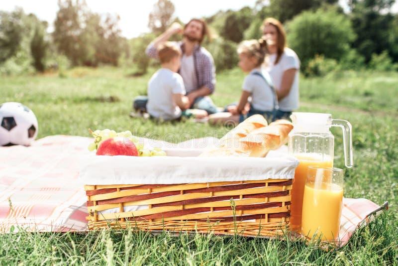篮子的图片用站立在草的毯子的果子和面包 有一个大瓶子除它以外的橙汁 免版税库存图片