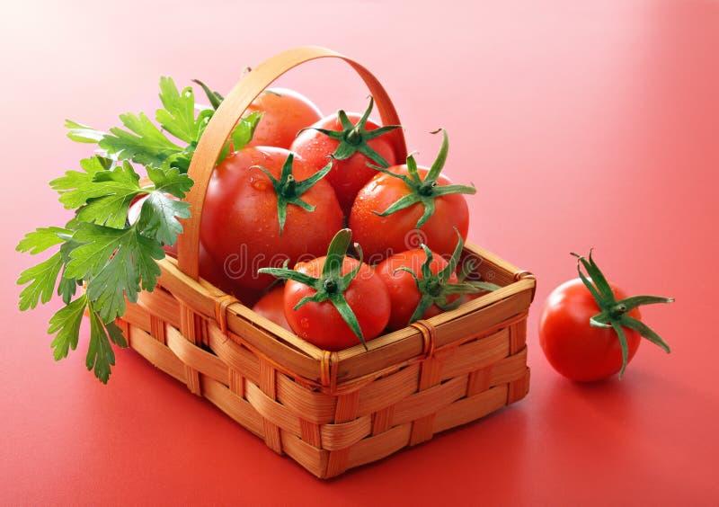 篮子绿色荷兰芹蕃茄 库存照片