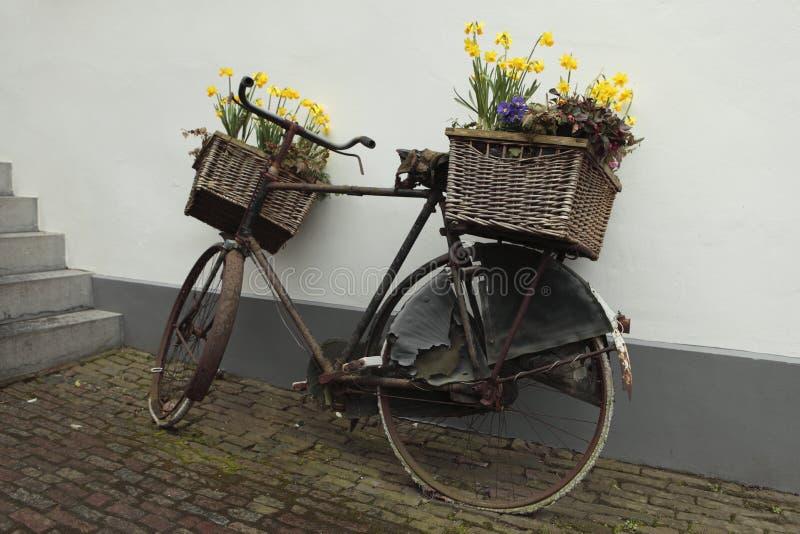 篮子自行车花 库存照片