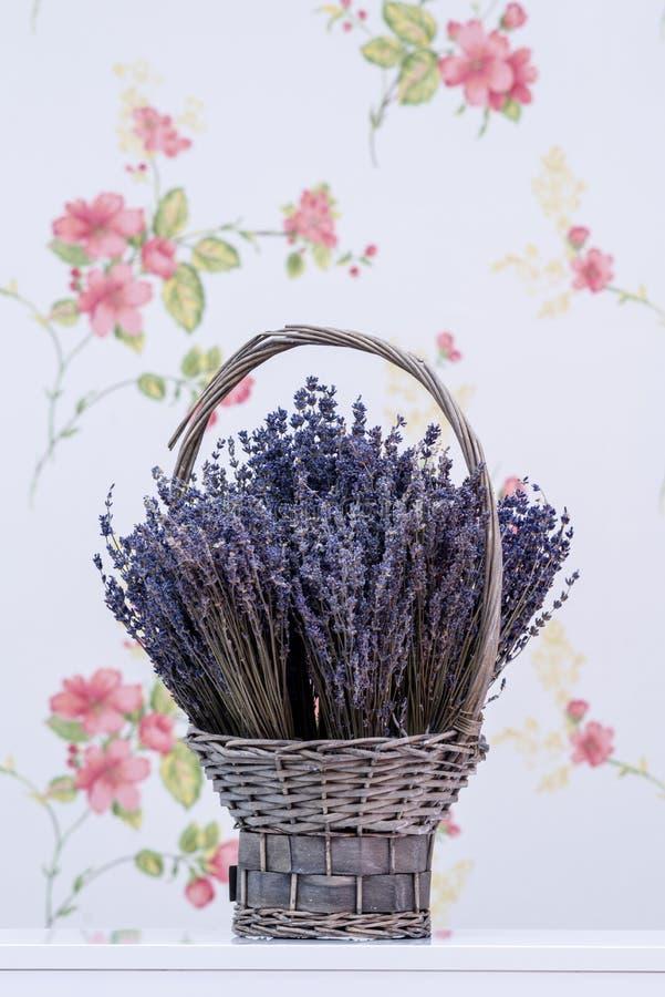 篮子花淡紫色柳条 图库摄影
