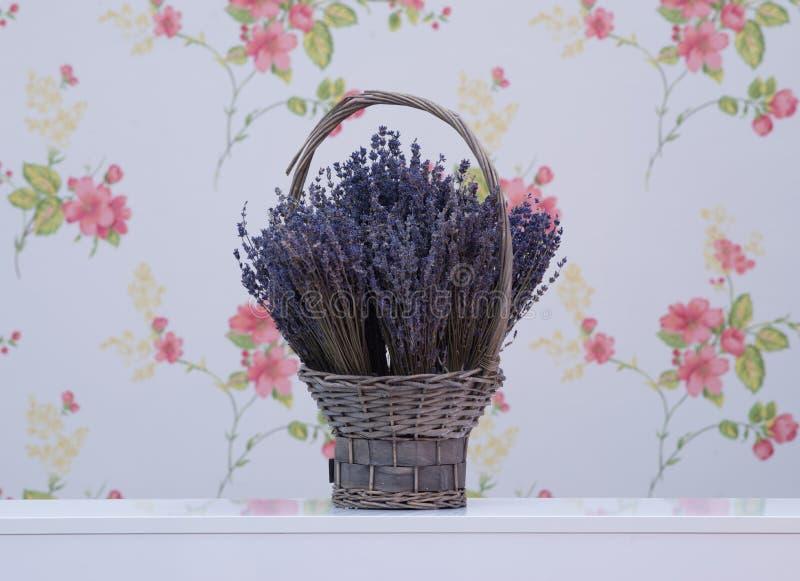 篮子花淡紫色柳条 库存图片
