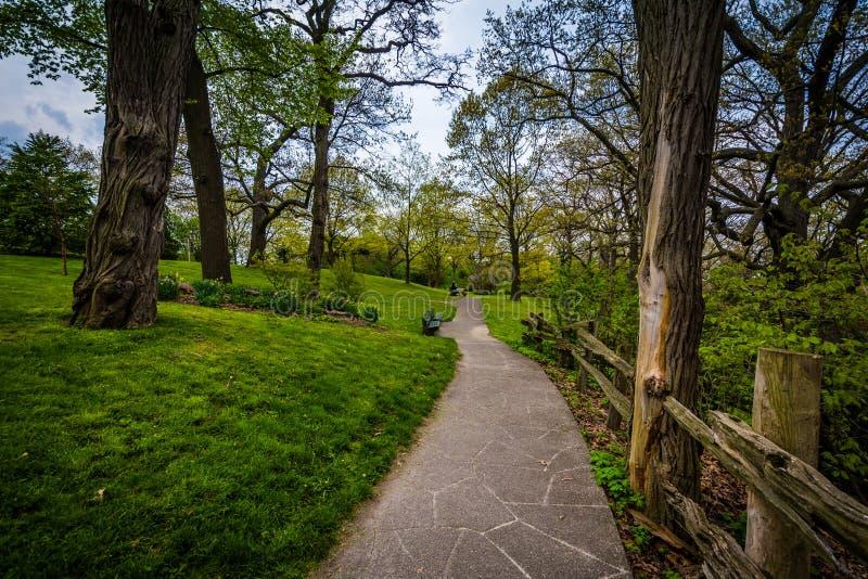 篱芭和树沿一个走道在高公园,在多伦多, Ontari 免版税图库摄影