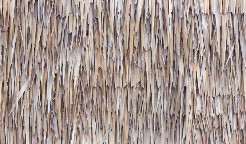 篱芭由干尼巴椰子棕榈叶做成 免版税库存照片