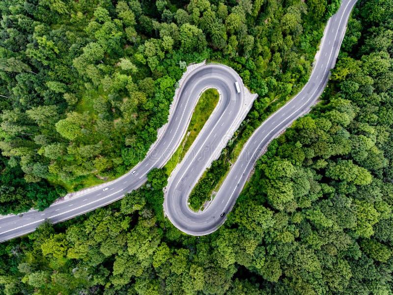 簪子轮弯曲道路低谷森林 库存照片