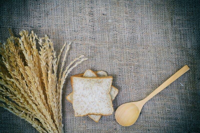 米和面包的耳朵 图库摄影
