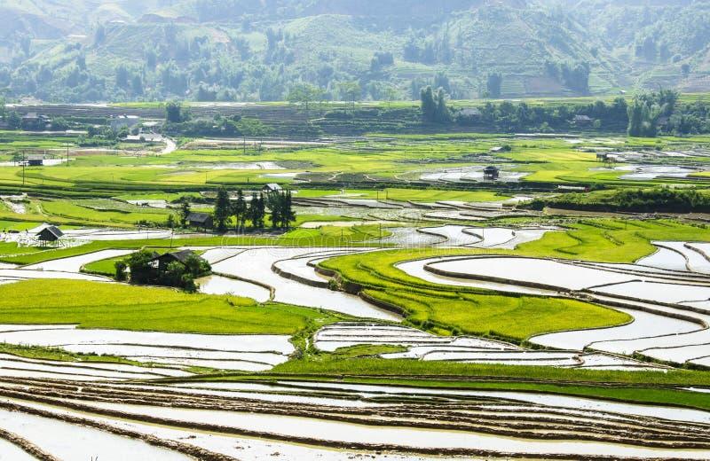 米大阳台在越南 免版税库存照片