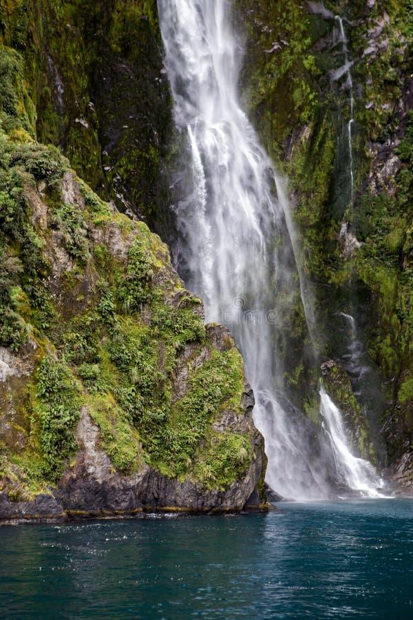 米尔福德峡湾瀑布到水里 库存照片