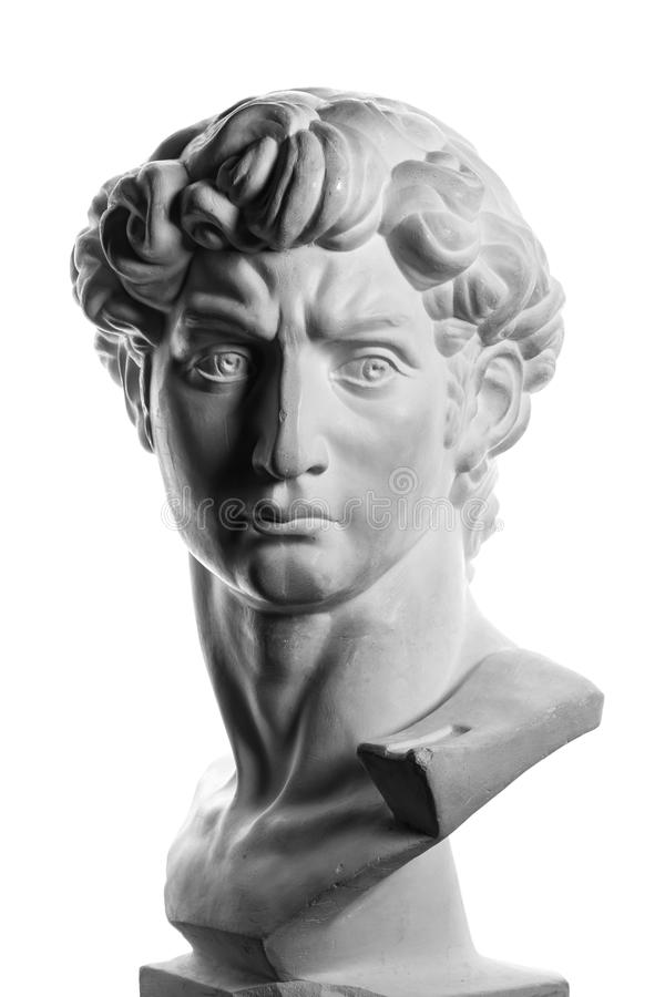 米开朗基罗的大卫石膏头  免版税库存图片