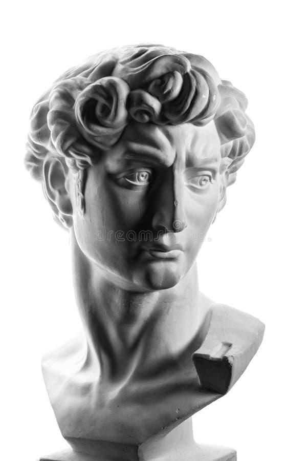 米开朗基罗的大卫石膏头  图库摄影