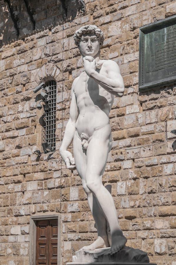 米开朗基罗的大卫雕象在佛罗伦萨,意大利 库存图片