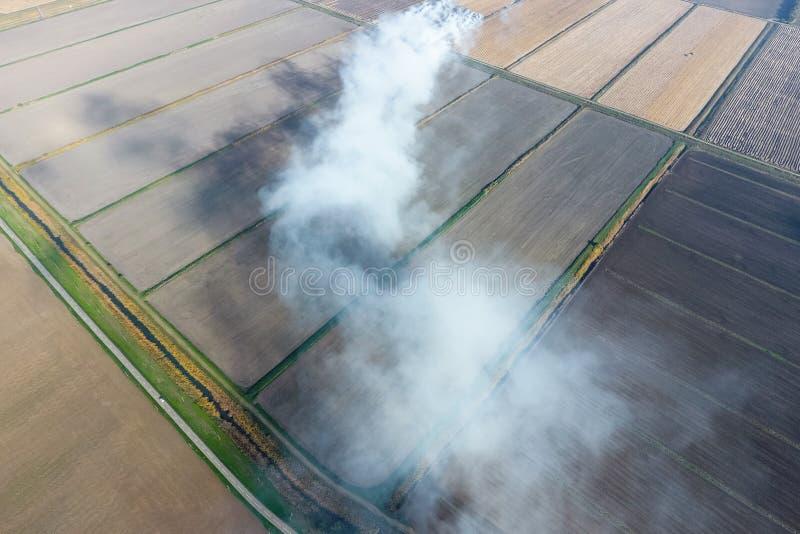 米秸杆燃烧在领域的 从米秸杆燃烧的烟在控制中 ? 免版税图库摄影