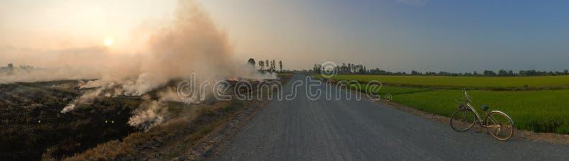 米秸杆燃烧在领域的 库存照片