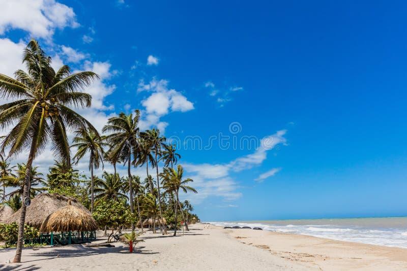 巴洛米诺马海滩使La瓜希拉省哥伦比亚环境美化 库存图片