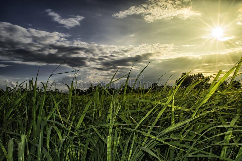 米调遣在与火光光的日落时间 库存照片