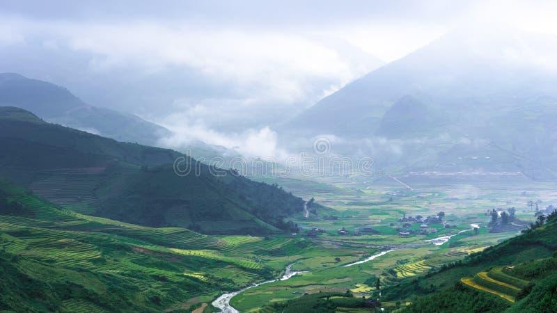 米露台的领域小山  免版税库存照片