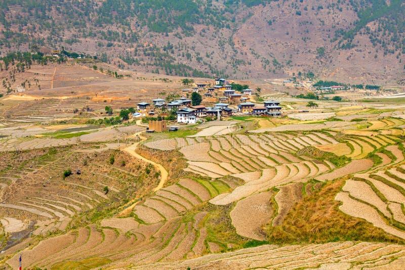 米领域和不丹人村庄 库存照片