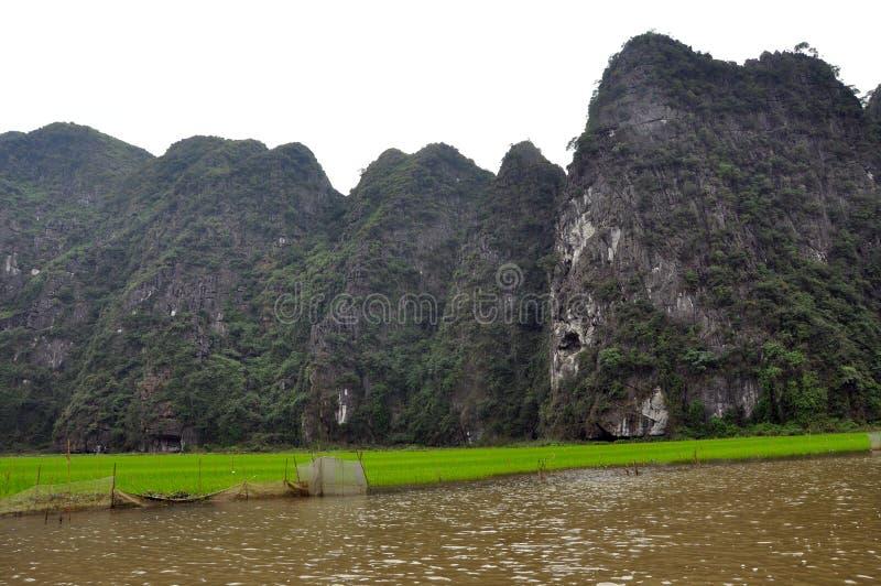 Download 米领域和石灰石峭壁, Tam Coc,越南 库存照片. 图片 包括有 beautifuler, 行程, 洞穴 - 30337928