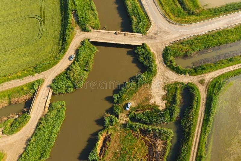 米领域用水充斥 被充斥的稻米 种植在领域的米农业方法  免版税库存照片