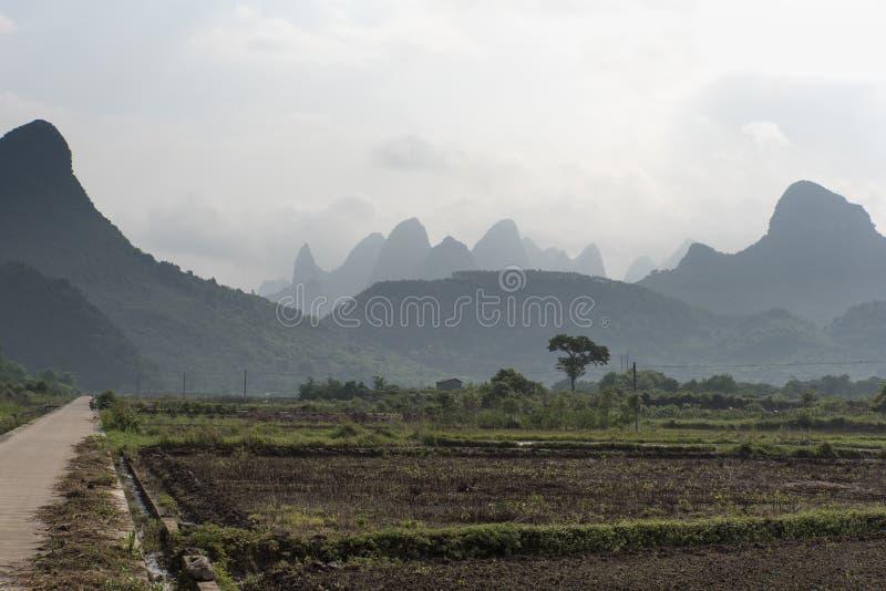 米领域,中国 免版税库存图片