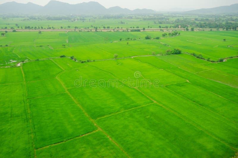 米领域绿草蓝天云彩多云风景 库存图片