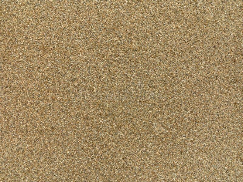 米黄沙子石渣纹理背景 免版税库存图片