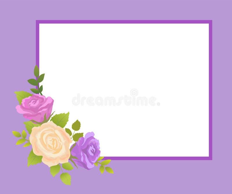 米黄的罗斯和紫色开花照片框架问候 向量例证