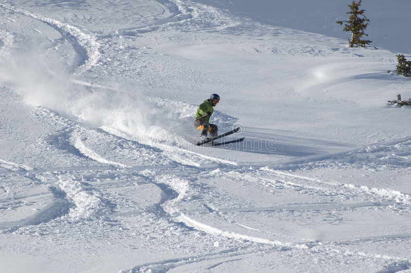 粉末滑雪 图库摄影