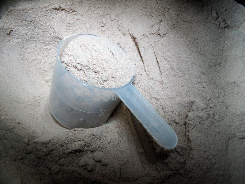 粉末蛋白质 免版税库存图片