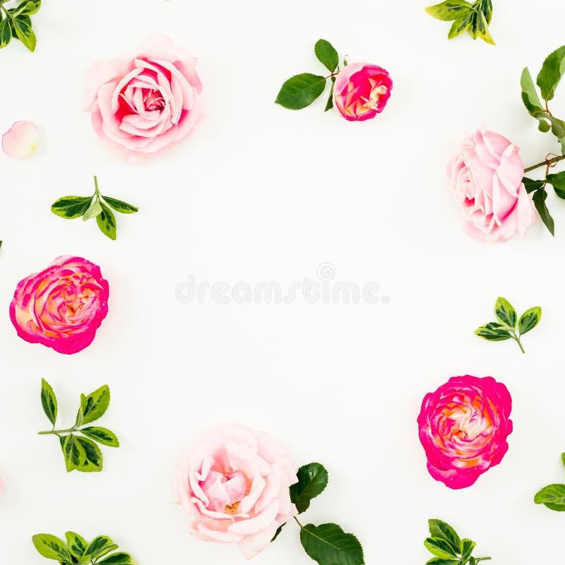 粉红彩笔玫瑰花和绿色叶子的花卉构成在白色背景 平的位置,顶视图 春天框架backgr 免版税库存图片