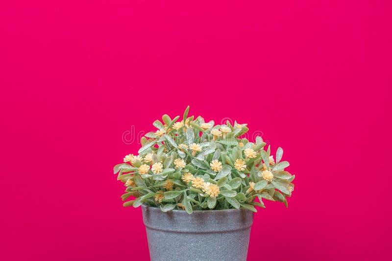 粉红色背景上的假树 图库摄影