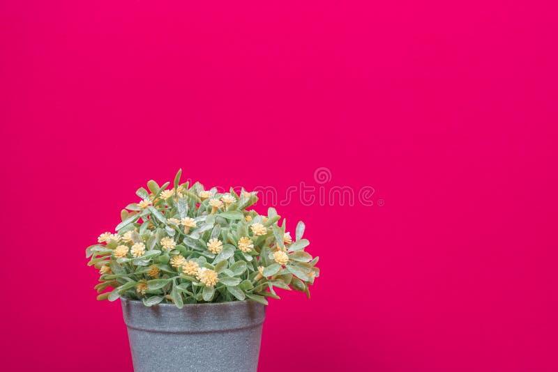 粉红色背景上的假树 免版税图库摄影