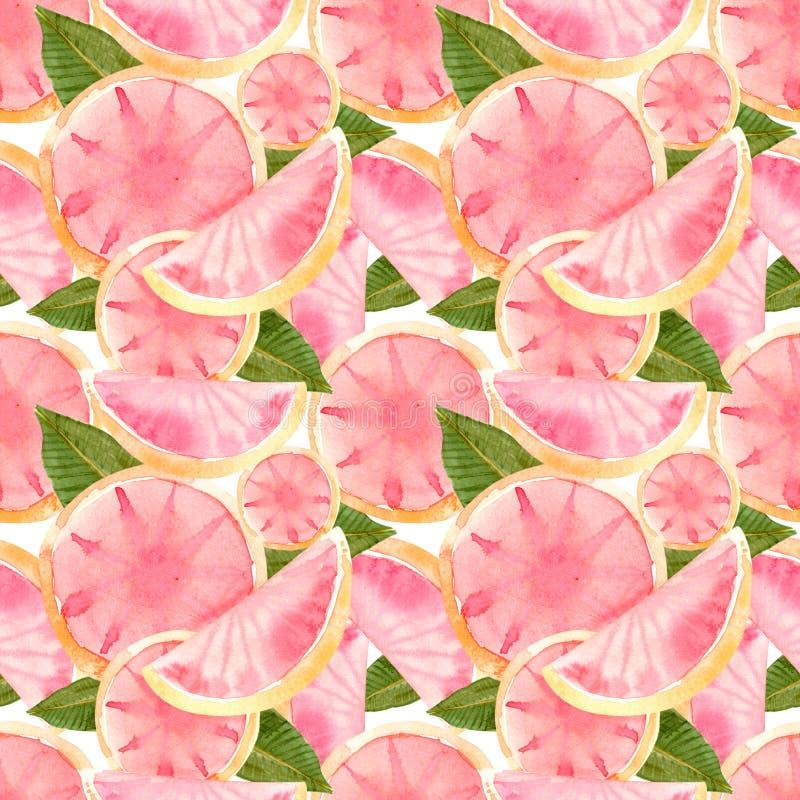 粉红色葡萄柚的无缝的样式 向量例证