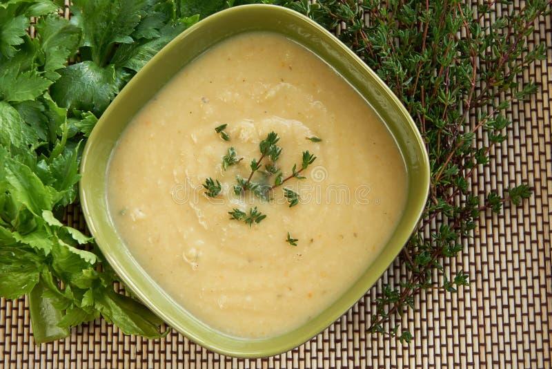 粗根芹菜汤鲜美奶油在一个绿色碗的 免版税库存图片