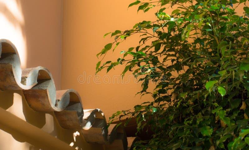 Download 粗砺使光滑 库存图片. 图片 包括有 部分, 粗砺, 焕发, 蜡烛, 弹出, 温暖, 平稳, 视图, 平安 - 62536069