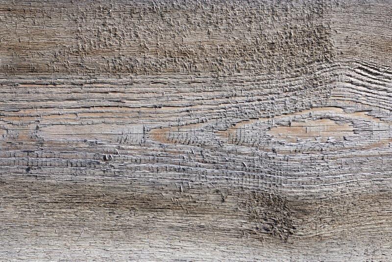 粗砺无缝的纹理自然光的木头 没有缝,桦树板的实体木材纹理 木头背景  库存照片