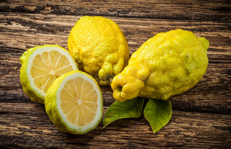 xingjamb�9l#���_粗砺的柠檬柑橘jambhiri醉汉. 地中海, 成份.