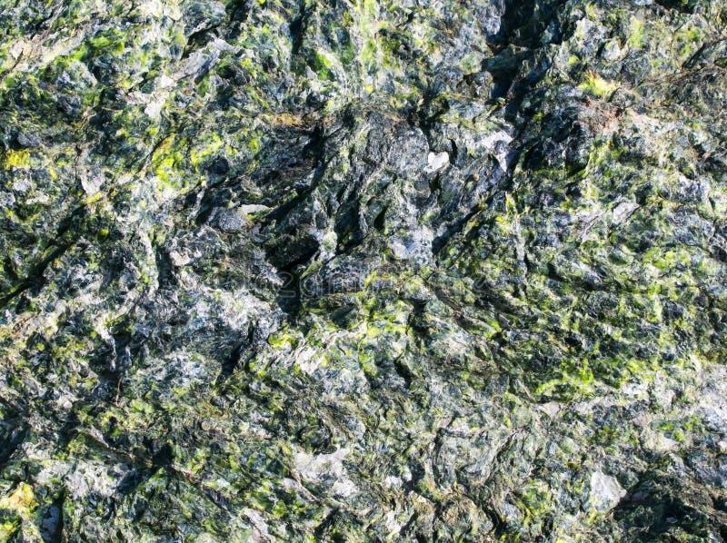 粗砺的石头的美好的纹理与鲜绿色inclusi的 图库摄影