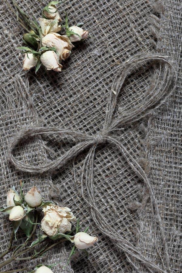 粗糙的亚麻制织品 对此是干米黄玫瑰和亚麻制螺纹弓  免版税库存照片