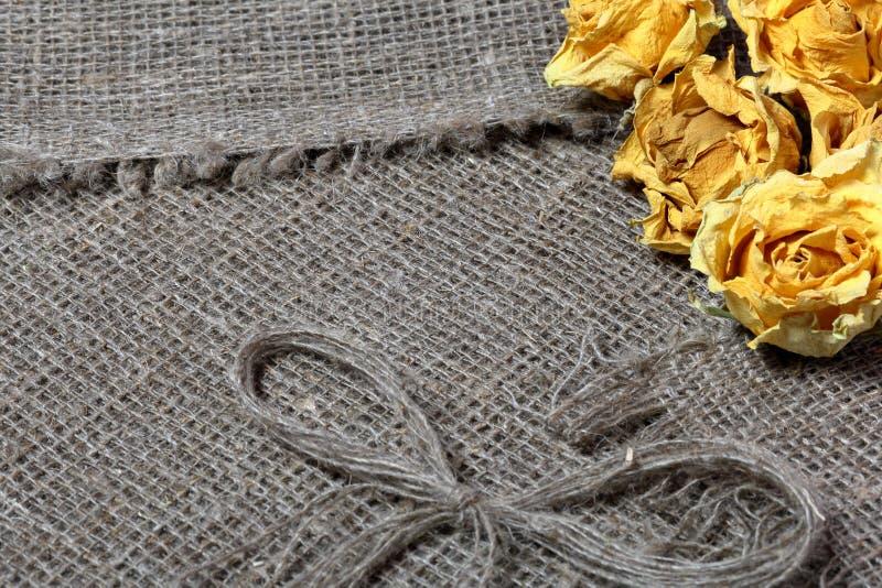 粗糙的亚麻制织品 对此是干黄色玫瑰和亚麻制螺纹弓  免版税库存图片