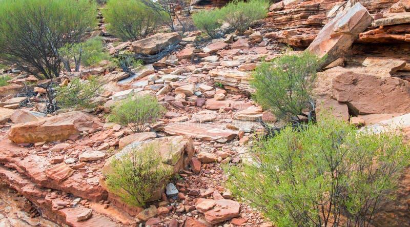 粗糙的地面:Kalbarri,西澳州 免版税库存照片