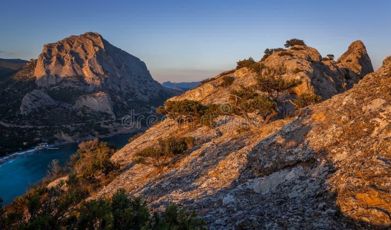 粗糙的岩石看法与阴影和小弯曲的树的 库存照片