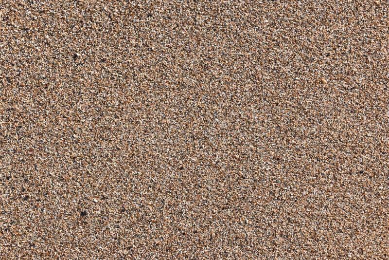 粗糙的海滩沙子样式 免版税库存图片