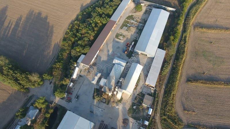 粮食作物 五谷存贮的飞机棚  烘干和焊接五谷的一个平台 被收获的五谷 库存图片