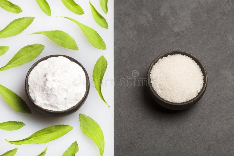 精制糖和粉末甜叶菊植物-甜叶菊rebaudiana 精制糖的替补由甜叶菊 图库摄影