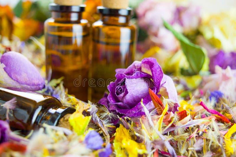 精油,芳香疗法,干燥花 库存照片