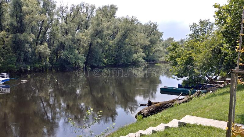 精纺毛筛绢河在潘切沃,塞尔维亚 免版税库存图片