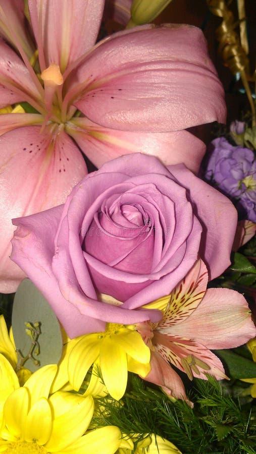 精美桃红色罗斯在混杂的花束的中心 免版税库存图片