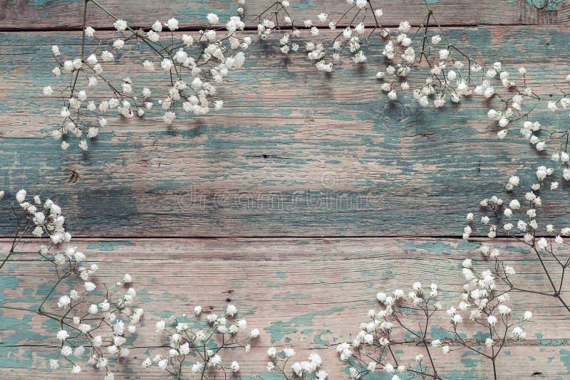 精美矮小的白花框架在老蓝色背景fr的 库存图片