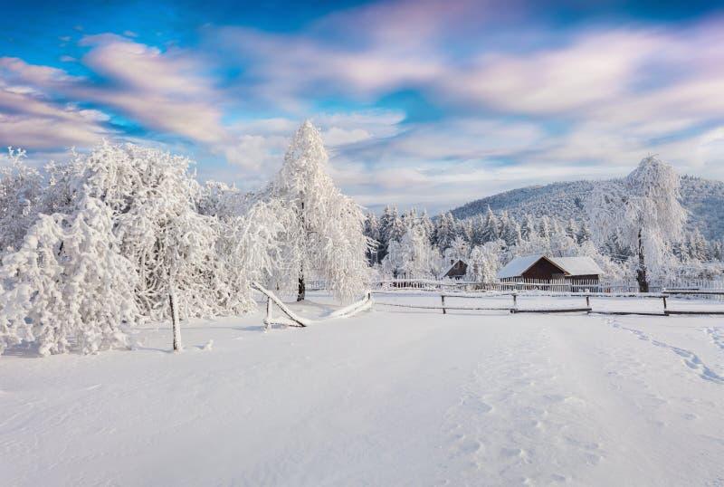 精采冬天日出在喀尔巴阡山脉的村庄 库存照片